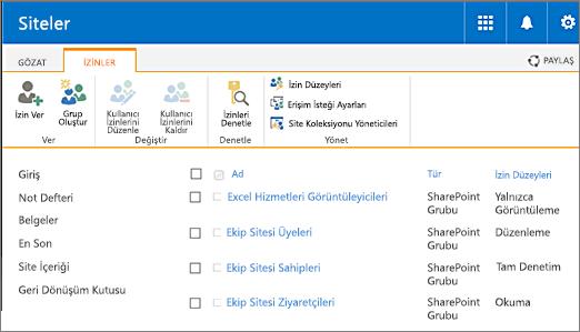 Site Ayarları/Kullanıcılar ve İzinler/Site İzinleri altındaki Site izinleri iletişim kutusu