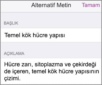 iPhone'da Alternatif metin iletişim kutusu.