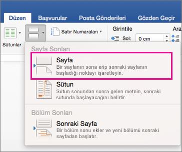 Tarifeli ağda bulunan karşıya yükleme ve indirme için bekleyen duraklatılmış dosyaların listesi