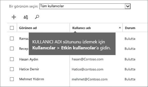 Office 365 yönetim merkezindeki Kullanıcı Adı sütunu