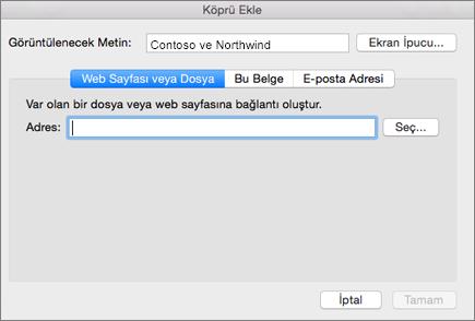 Bir Web sayfası, e-posta adresi veya belgeye köprü ekleme seçeneklerini gösterir