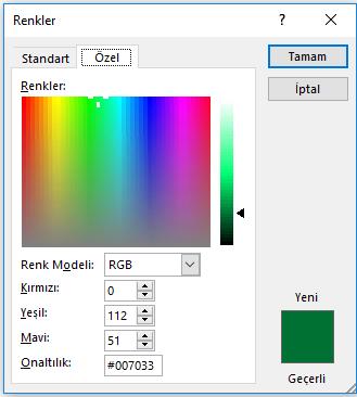 Özel bir renk görüntülenen renkler iletişim kutusu