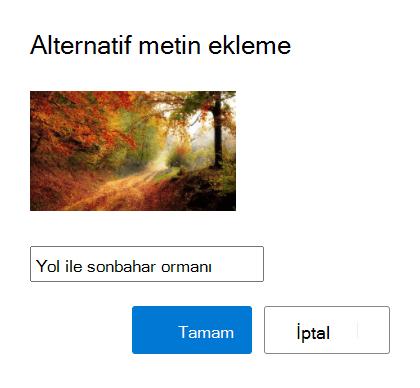 Outlook 'ta resimlerinize alternatif metin ekleyin.