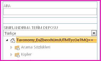 Terim Deposu yönetim aracında, taksonominin ve alt klasörlerinin adlarını gösteren ağaç görünümünün ekran görüntüsü.