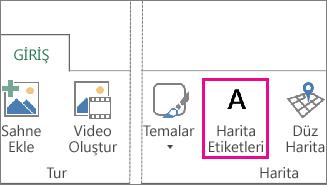 Power Map Giriş sekmesinde Harita Etiketleri düğmesi