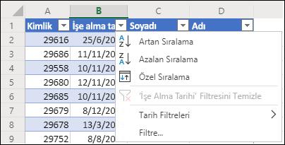Artan veya Azalan düzende sıralamak için Excel'in Tablo Filtresini kullanma