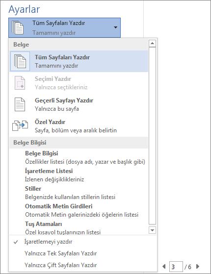 Tüm Sayfaları Yazdır menüsünün ek seçenekleri gösterecek şekilde genişletilen Yazdır bölmesinin ekran görüntüsü.
