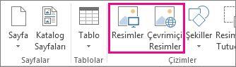 Publisher'da Ekle menüsünde bulunan Resim Ekle seçeneklerinin ekran görüntüsü.