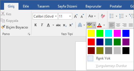 Metin Vurgu Rengi seçenekleri Giriş sekmesinde gösterilir.