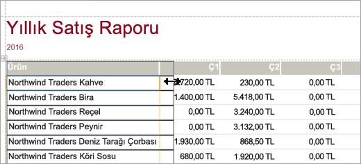 Yıllık Satış Raporu Ürünler sütununu gösteren ekran alıntısı