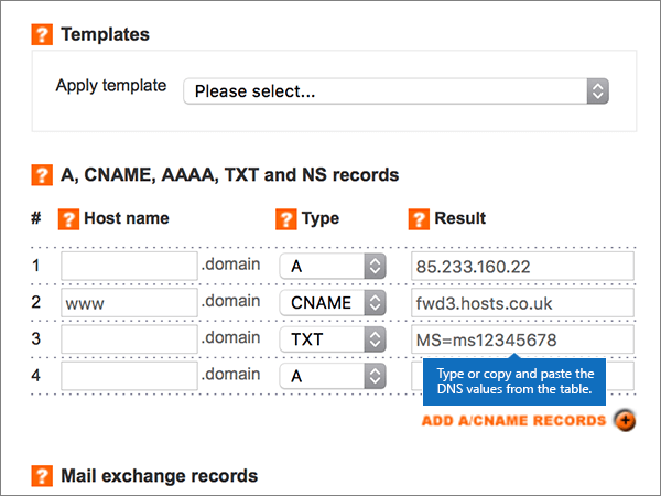 DNS Bölgesini Ekle/Değiştir sayfasında değer girme