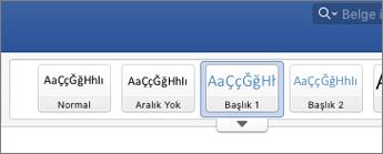 Başlık stili seçeneklerinin ekran görüntüsü
