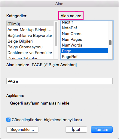 Alan adlarının altında sayfayı seçin