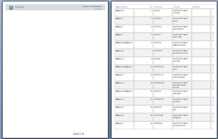 sayfa sonu uygulanmış rapor sayfalarının önizleme görüntüsü
