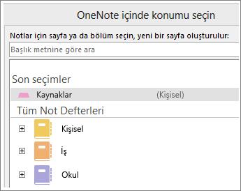 Skype notlarının alınacağı sayfayı seçebileceğiniz OneNote penceresinin ekran görüntüsü.