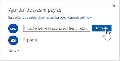 OneDrive'da Paylaş iletişim kutusundaki Bağlantı Al seçeneğini gösteren ekran görüntüsü