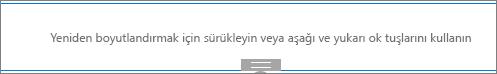 Düzenleme modunda ayırıcı web bölümü