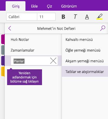 OneNote'ta yeniden adlandırılan bir bölümün ekran görüntüsü