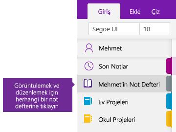 OneNote'ta Not Defterleri listesinin ekran görüntüsü