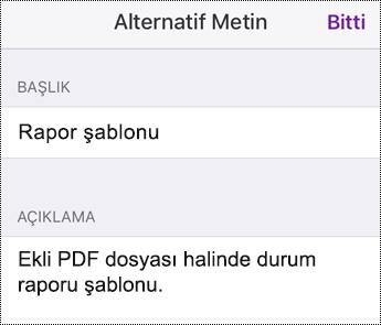 iOS için OneNote'ta ekli dosyalara alternatif metin ekleme