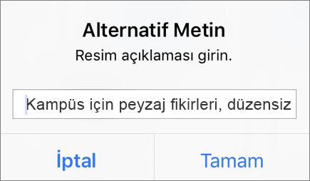 iOS için Outlook'ta resim için alternatif metin menüsü