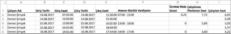 Bir çalışanın örnek zaman saati veriler