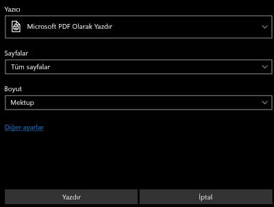 PDF Yazdır