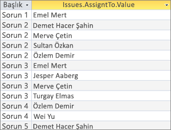 _LT_Fieldname> kullanarak çok değerli alanın sonuçları. Değerlerini