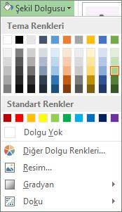 Şekil Dolgusu renk seçenekleri menüsü