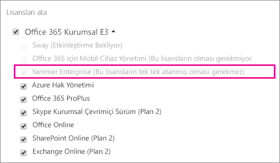 Yammer Kurumsal lisansı seçili halde Office 365 yönetim merkezinin Lisans atama bölümünün ekran görüntüsü