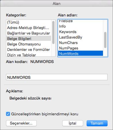 Belge Bilgileri ve Sözcük Sayısı'nın seçili olduğu Alan iletişim kutusu.