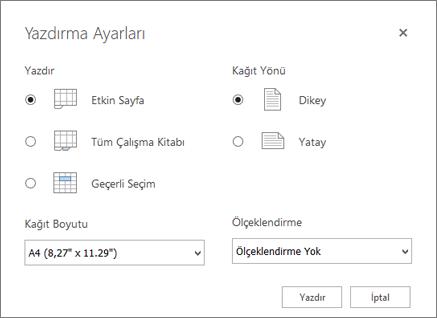 Dosya > Yazdır tıklatıldıktan sonraki Yazdırma Seçenekleri