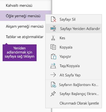 OneNote'ta yeniden adlandırılan bir sayfanın ekran görüntüsü