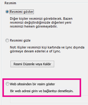 Lync resmim seçenekleri penceresinin, web sitesinden resim seçme öğesi vurgulanmış olan bölümünün ekran görüntüsü