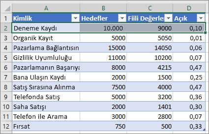 Örnek Excel verileri