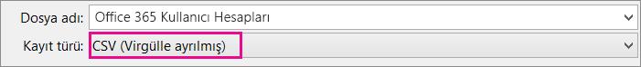 Excel'de dosyayı CSV biçiminde kaydetmeyi gösteren bir resim