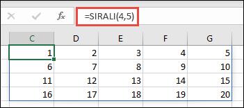 4 x 5 dizisinin kullanıldığı SIRALI işlev örneği