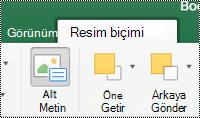 Mac için Excel 'de Şeritteki resimler için alternatif metin düğmesi