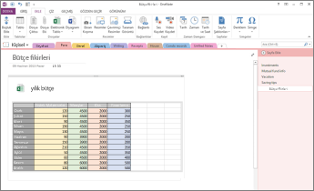 OneNote'ta sayfadaki Excel elektronik tablosuna genel bakış