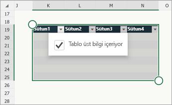Tablom üst bilgi satırı içeriyor onay kutusu seçili durumdaki tablo