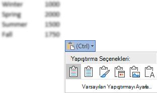 Bazı Excel verilerinin yanındaki Yapıştırma Seçenekleri düğmesi, seçenekleri göstermek için genişletilir