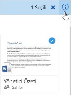 Bir öğenin seçilmesinin ve bilgi simgesine tıklanmasının ekran görüntüsü
