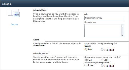 SharePoint 2010 anket Seçenekleri sayfası