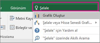 Windows için Excel 2016'da şelale metnini ve sonuçlarını gösteren Göster kutusu