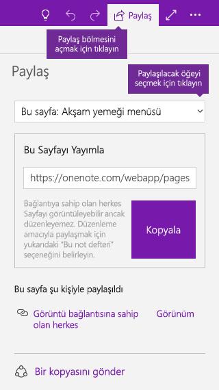 OneNote'ta tek bir sayfa paylaşma işleminin ekran görüntüsü