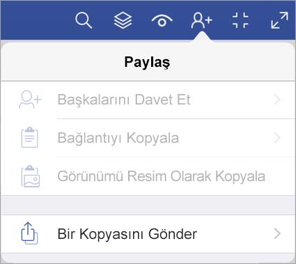 iPad için Visio Görüntüleyicisi'nde dosyanın bir kopyasını gönderme