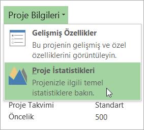 Proje Bilgileri seçenekleri
