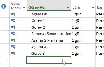 Gantt Grafiği'nde bir görev listesi.