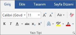 Word'de Giriş sekmesindeki Yazı Tipi grubunda yazı tipini ve yazı tipi boyutunu seçin.