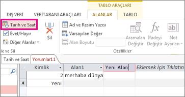 Veri Sayfası görünümünde Tarih/Saat alanı ekleme